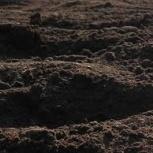 Плодородный грунт с доставкой 5-30 тонн, Ярославль